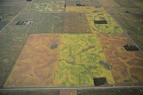 Yankton (SD) United States  city photo : ... of Farms Near Yankton, Yanktown County, South Dakota, SD United States