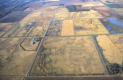 Bald Knob (AR) United States  city pictures gallery : Airphoto Aerial Photograph of Farm Fields, White County, Arkansas ...