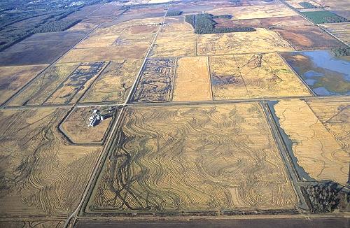 Bald Knob (AR) United States  city photo : Airphoto Aerial Photograph of Farm Fields, White County, Arkansas ...