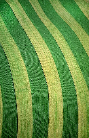 airphoto aerial photograph of crop rows carroll county