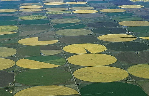 Alamosa (CO) United States  City new picture : ... of Irrigation Circles, Alamosa County, Colorado, CO United States